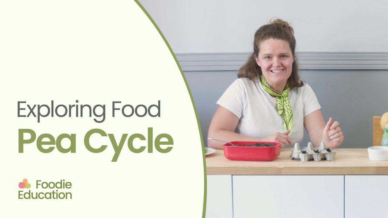 Foodie Education Pea Cycle